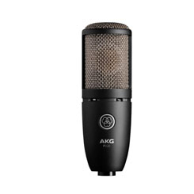 AKG High-Performance Large Diaphragm True Condenser Microphone P220
