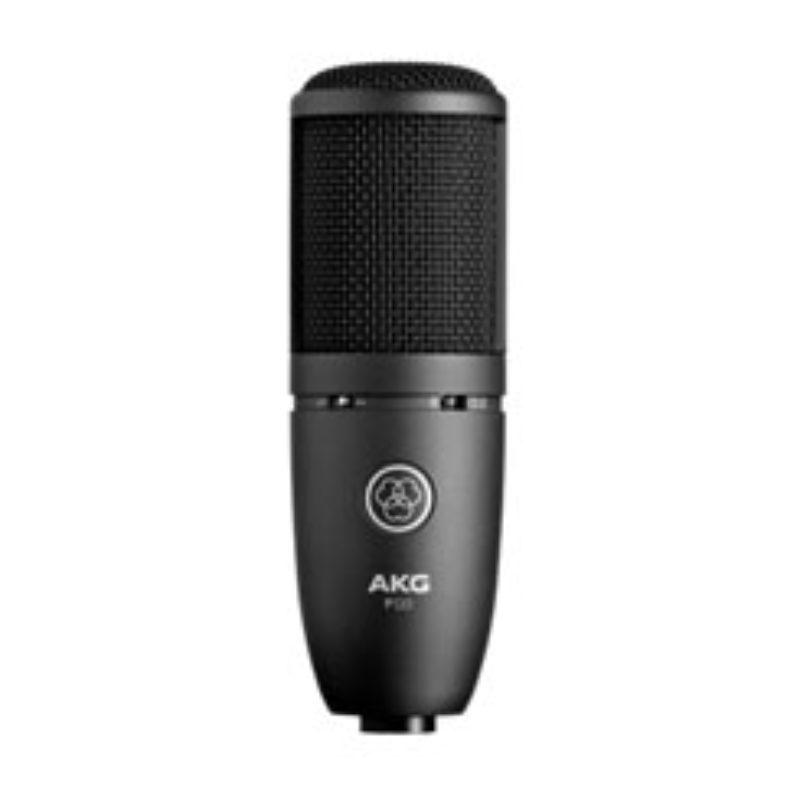 AKG High-Performance General Purpose Recording Microphone P120