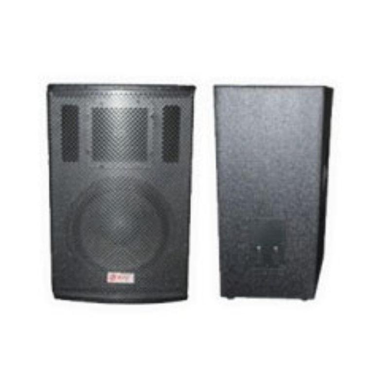 NPE Potable Sound TM15